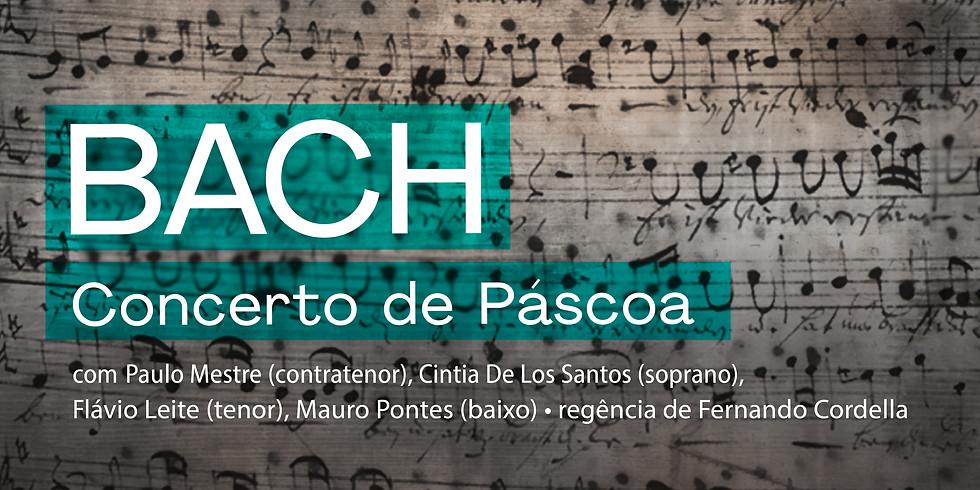 BACH BRASIL #8 - Concerto de Páscoa