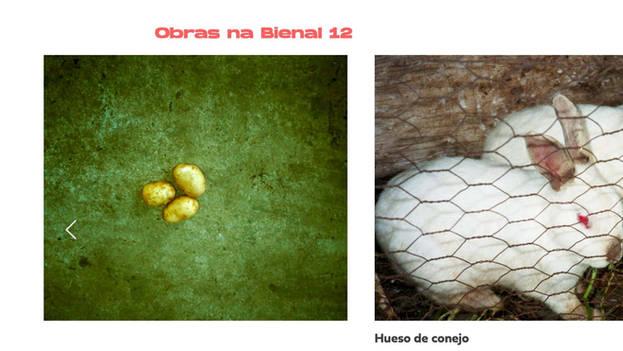 BIENAL 12 - Teaser 14 Frames | BIENAL 12