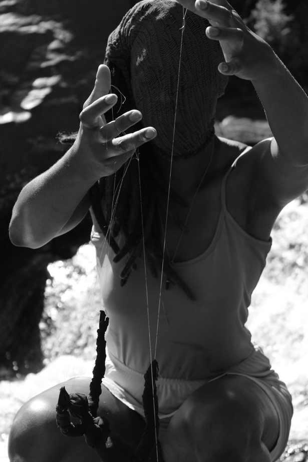 Psicanálise do cafuné: catinga de mulata (Tanacetum vulgare)