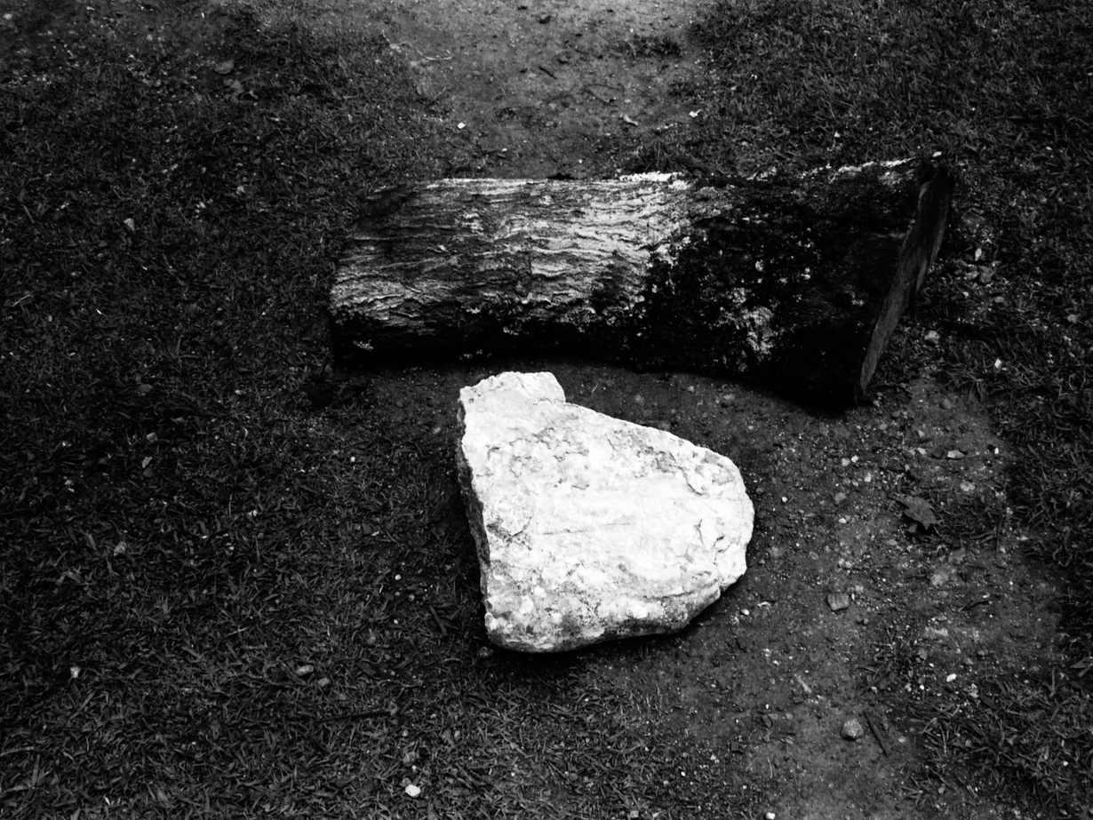 No sentar a los niños en un tronco o en una piedra