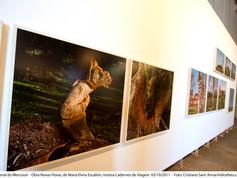 8ª Bienal do Mercosul - Obra Novas Floras, de María Elvira Escallón, mostra Cadernos de Viagem