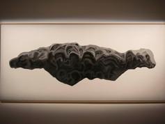 9a Bienal do Mercosul. Obra Meson de Fierro, 2011. Artista Faivovich e Goldberg. Espaco Santander Cultural.