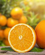 naranjas_Mesa de trabajo 1.jpg