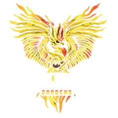 solfire-169.png