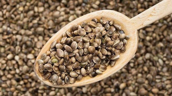 wooden-spoon-with-hemp-seeds - Beegens B
