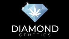 diamond-genetics-e1602691837732.jpg