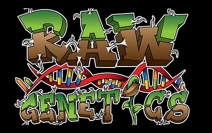 Raw Genetics.png
