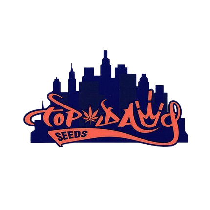 Top-Dawg-Seeds-Logo-removebg-preview.png