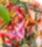 salade%20de%20pamplemousse_edited.jpg