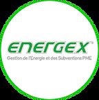 logo energex.png