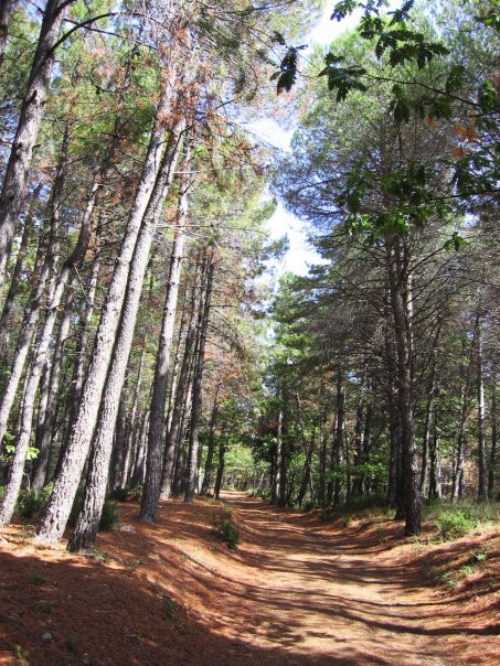 Pollino National Park trails