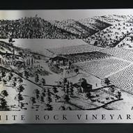 white-rock-vineyards-5.jpg