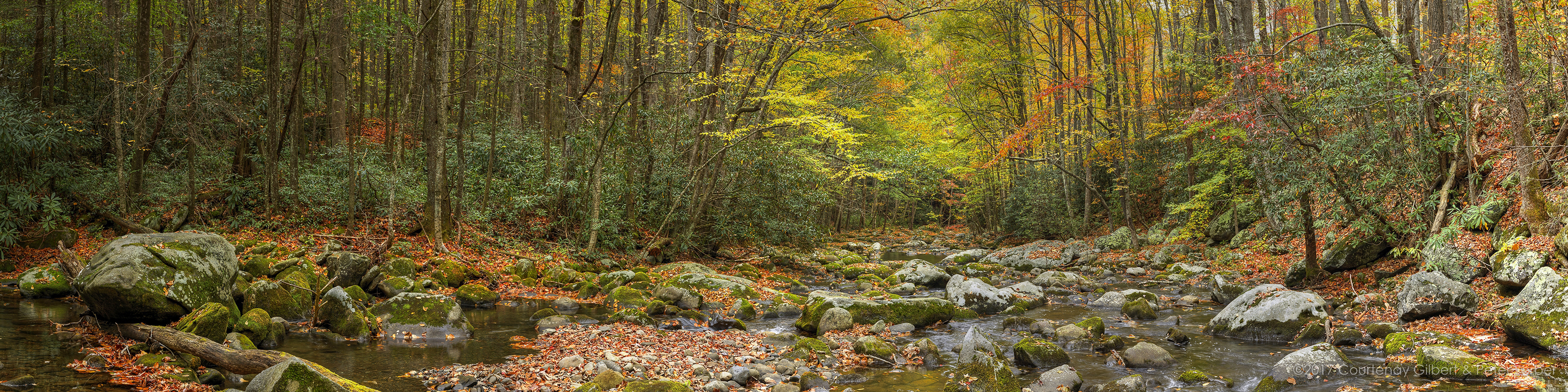 Little Prong Middle River in Autumn
