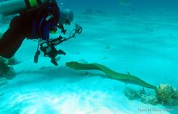 Grand Cayman 2011_067.jpg