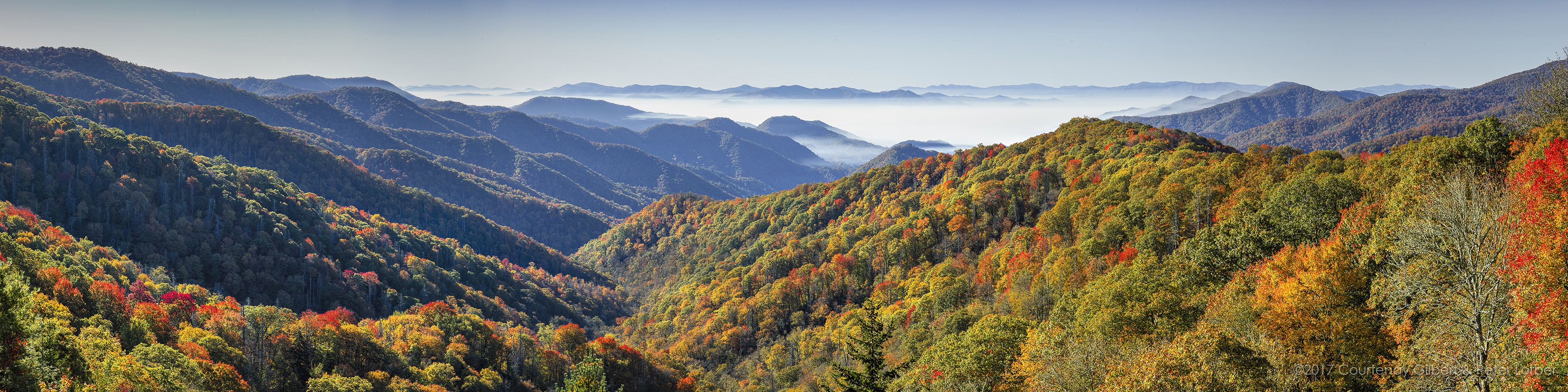 Smoky Mountain Vista