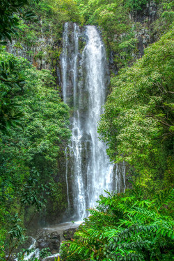 Maui_065.jpg