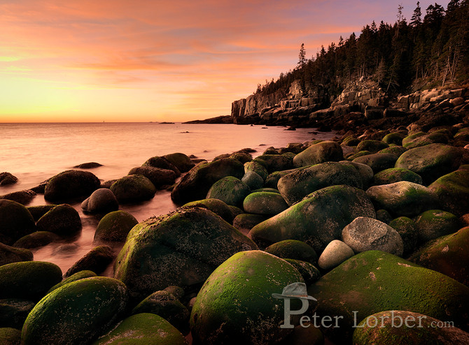 Pic of the Day - Otter Cliff