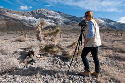 Death_Valley_2012_web_064.jpg