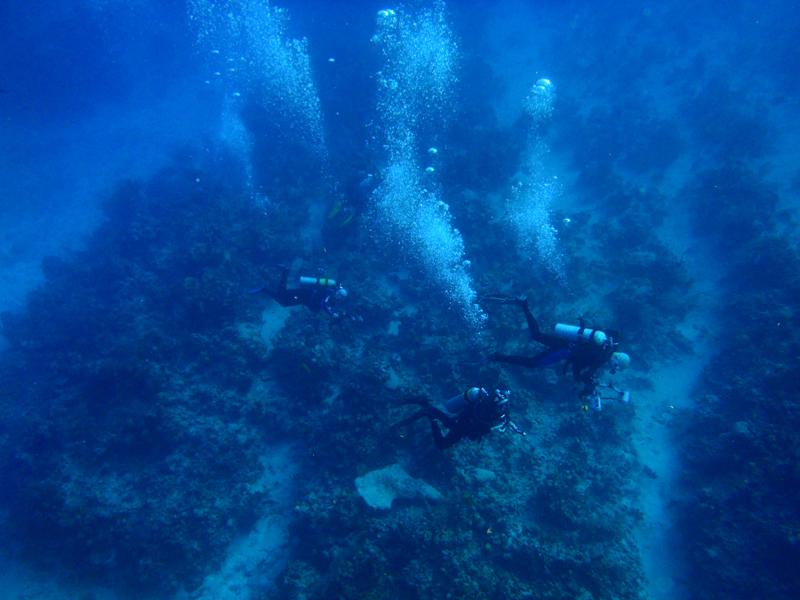 Grand Cayman 2011_031.jpg