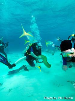 Grand Cayman 2011_064.jpg