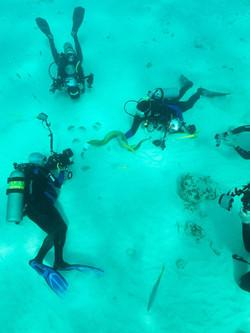 Grand Cayman 2011_063.jpg