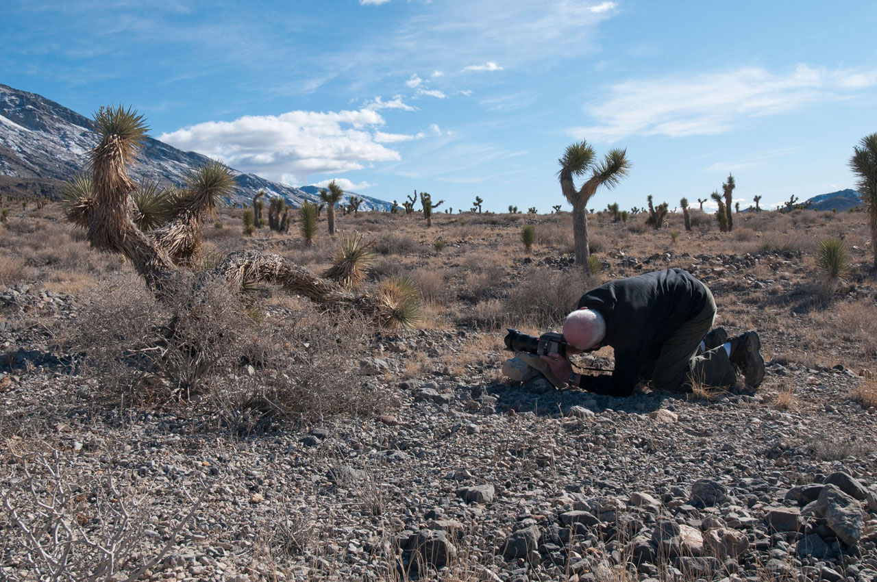 Death_Valley_2012_web_066.jpg