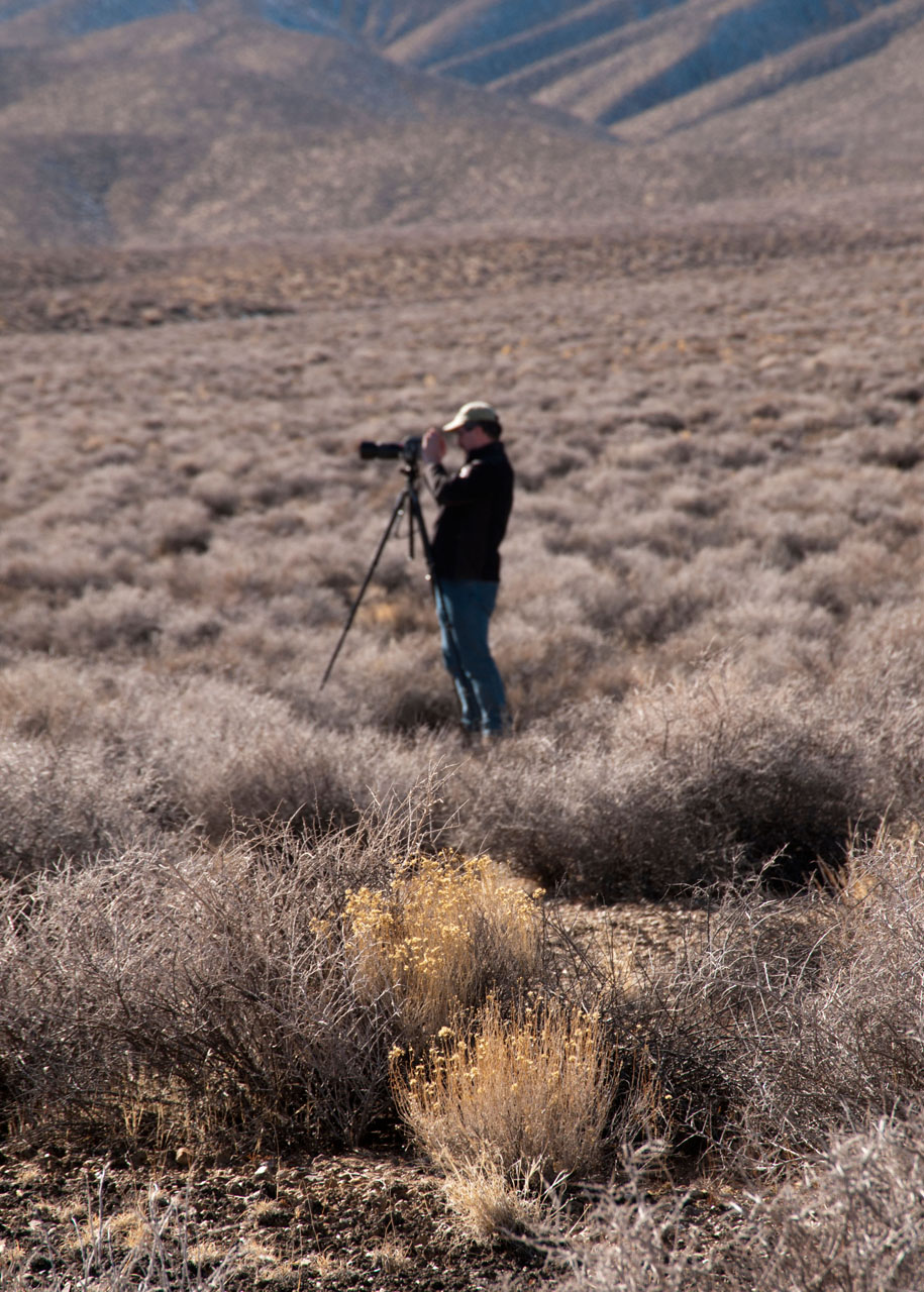 Death_Valley_2012_web_144.jpg