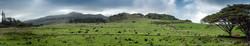 Maui_063.jpg