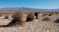 Death_Valley_2012_web_139.jpg