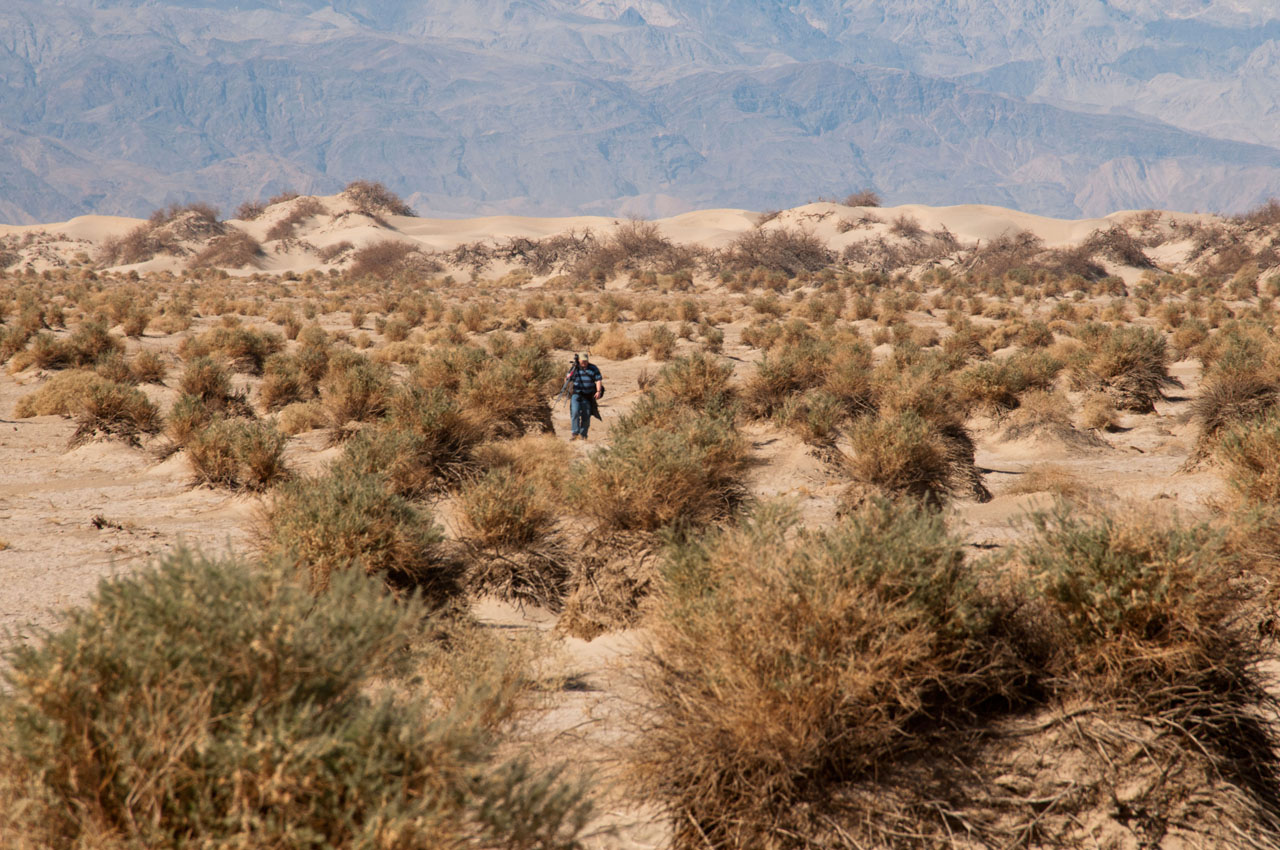 Death_Valley_2012_web_141.jpg