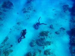 Grand Cayman 2011_046.jpg