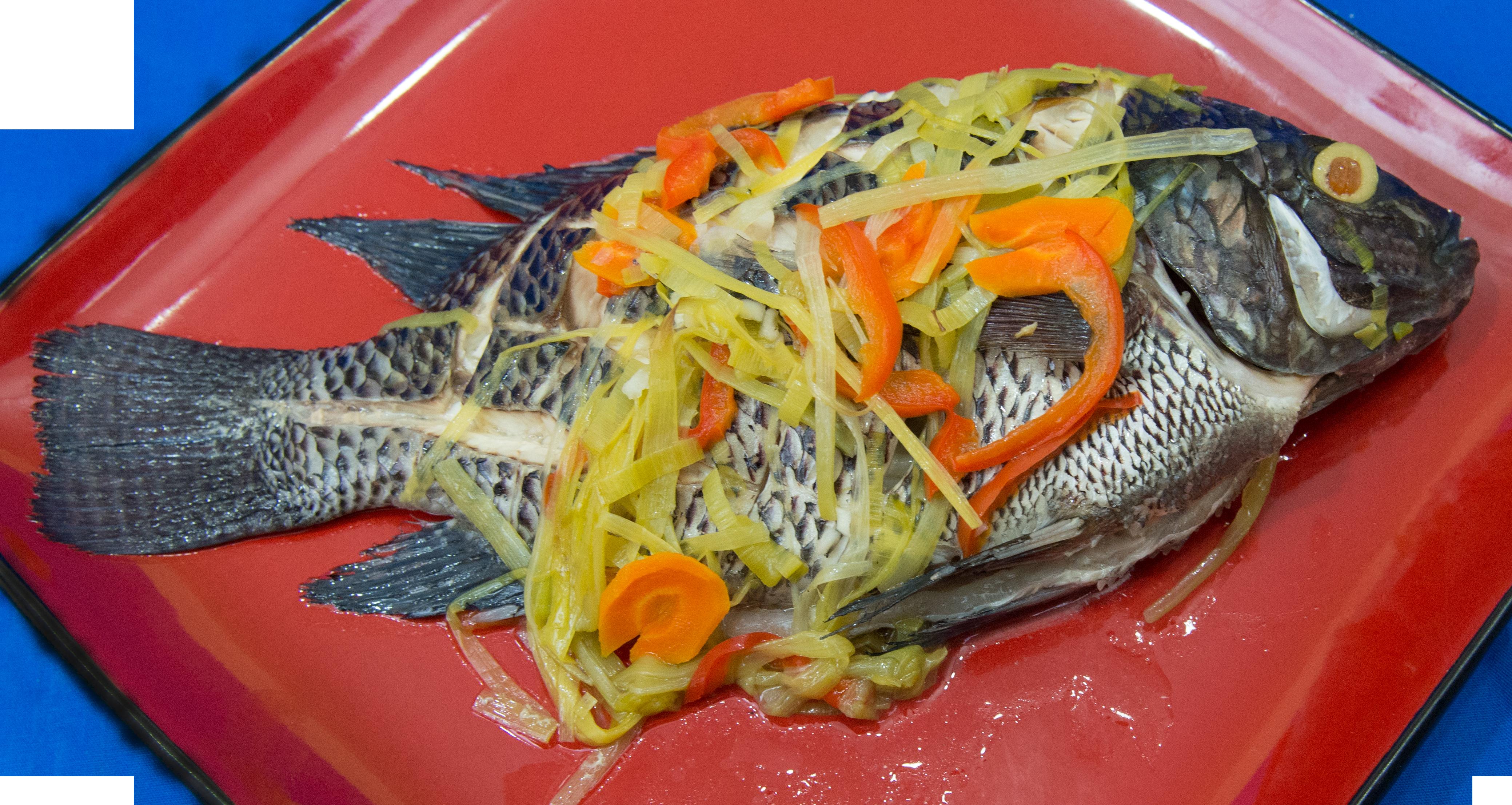 Fish 12.png
