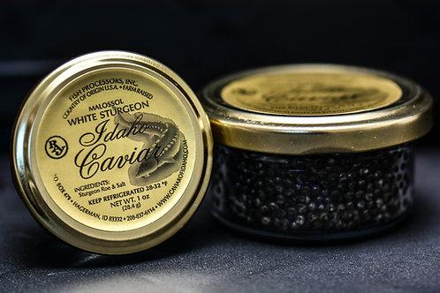 White Sturgeon Caviar