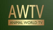 Animal World TV logo.png