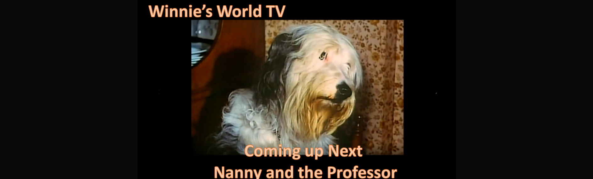Winnies World and Nanny and the Professo