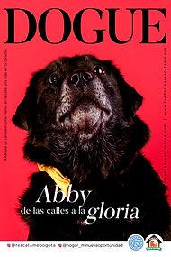 2.Afiche_Campaña Pets-3_1.jpg