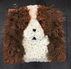 bespoke dog arrangement