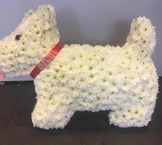 #dog #dogs #crufts #flowers #florist #ca