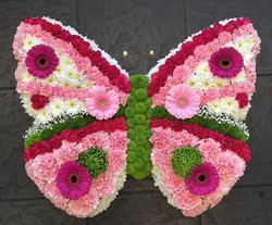 Bright Butterfly Funeral Tribute