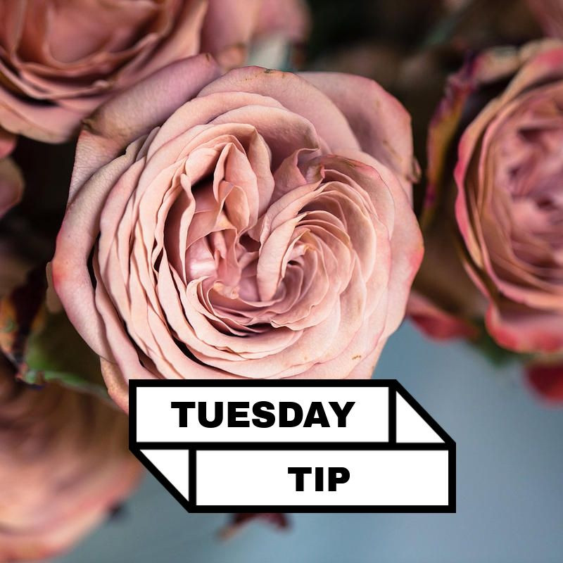 Tuesday Tips - Flowers Arrangement Tips
