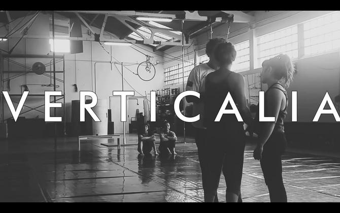 V E R T I C A L I A project about movement / investigación
