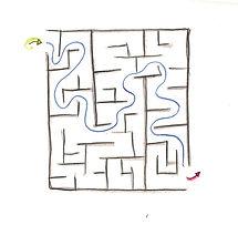 FOCUS-S-DB-w-maze-72.jpg