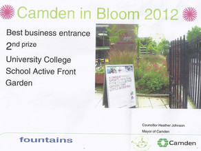 Frognal Gardens wins another prize in Camden in Bloom 2012!