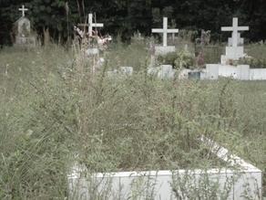 Como a sociedade brasileira lida com a morte?