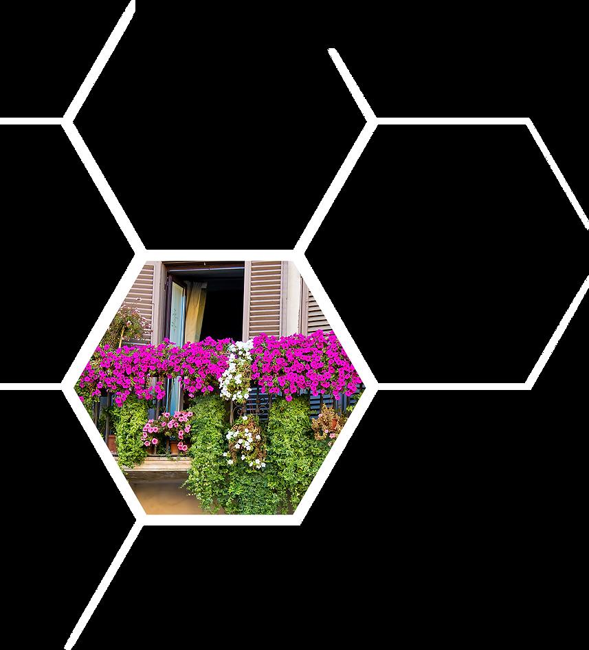hexagon 4 L - Co jeszcze mozesz - WHITE.