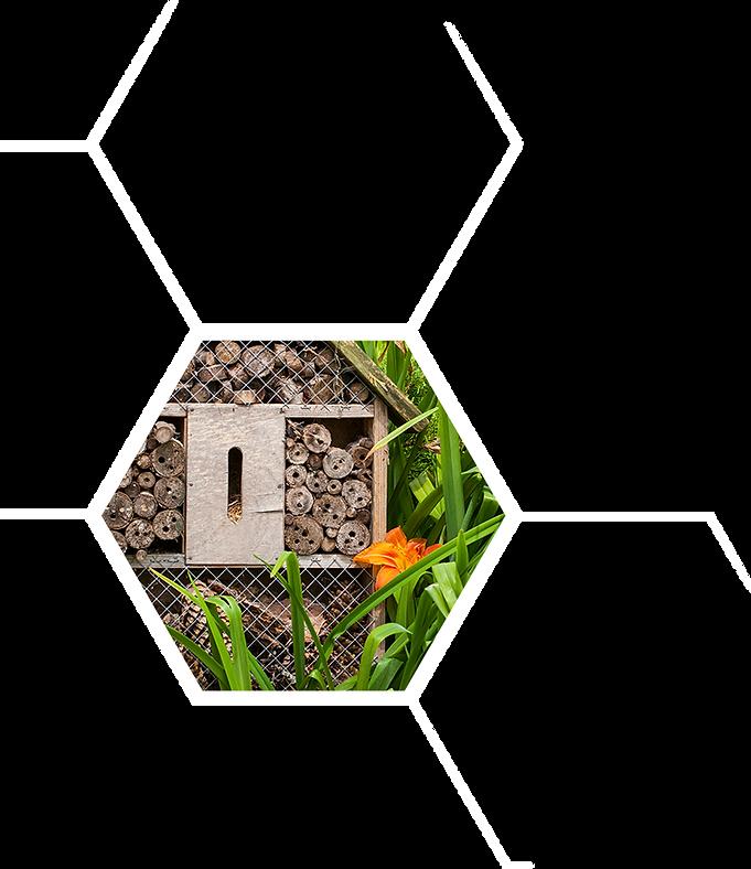 hexagon 6 L - Co jeszcze mozesz - WHITE.