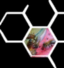 hexagon 7 R - Co jeszcze mozesz - WHITE.