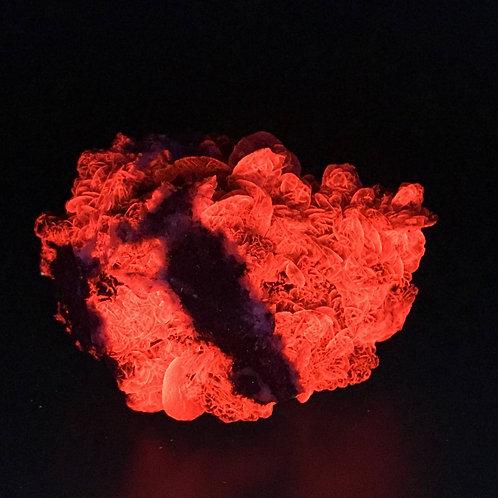 CALCITE UV FLUORESCENT CAMPIGLIA - 9 x 7 x 5 cm