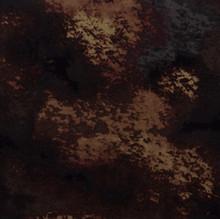 Brown Reef