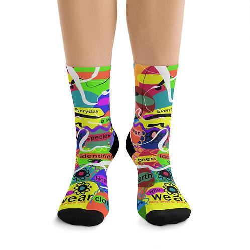 Paula Proverbs Homo Sapien  socks